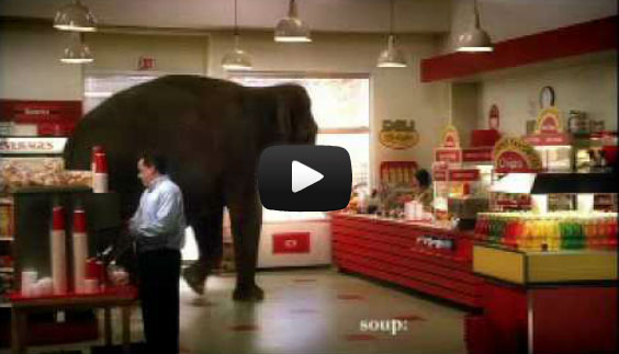 The elephant and the credit card